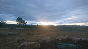 My view on the Mango farm near Dimbulah