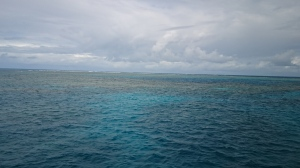 The Great Barrier Reef, as seen from the boat