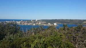 Just one of my views on the Manly to Spit Bridge walk