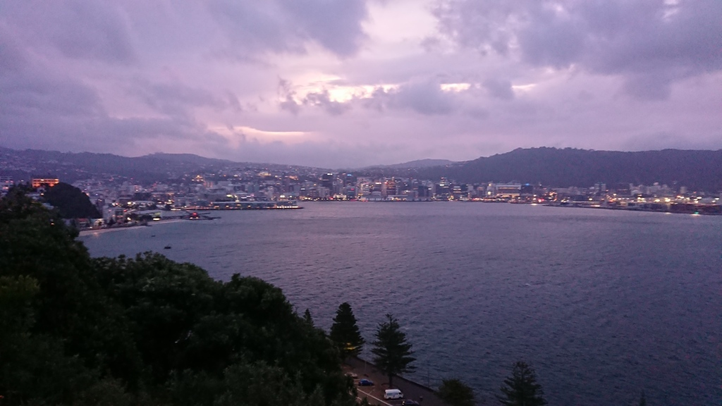 A view of Wellington from above Oriental Bay