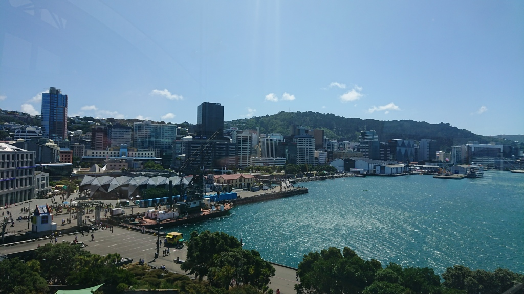 Wellington from Te Papa