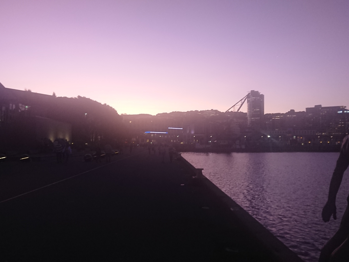Wellington waterfront at sunset