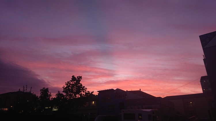 A stunning Wellington sky