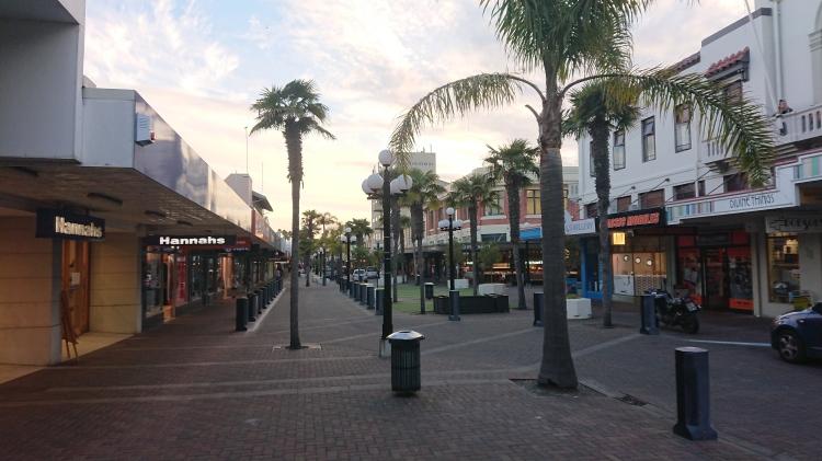 Emerson St in Napier