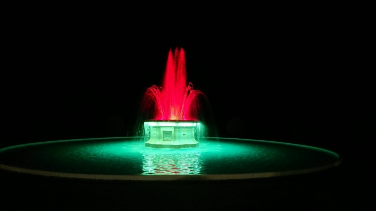 Lit up fountain in Napier