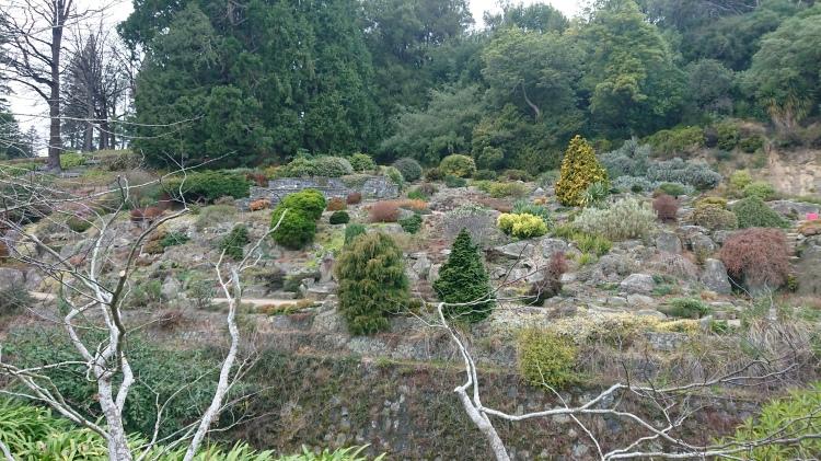 Rock garden at Dunedin Botanical Gardens