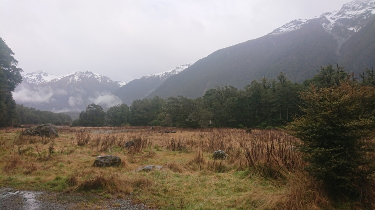 Mountains rising tall above the ground in the Fiordland National Park