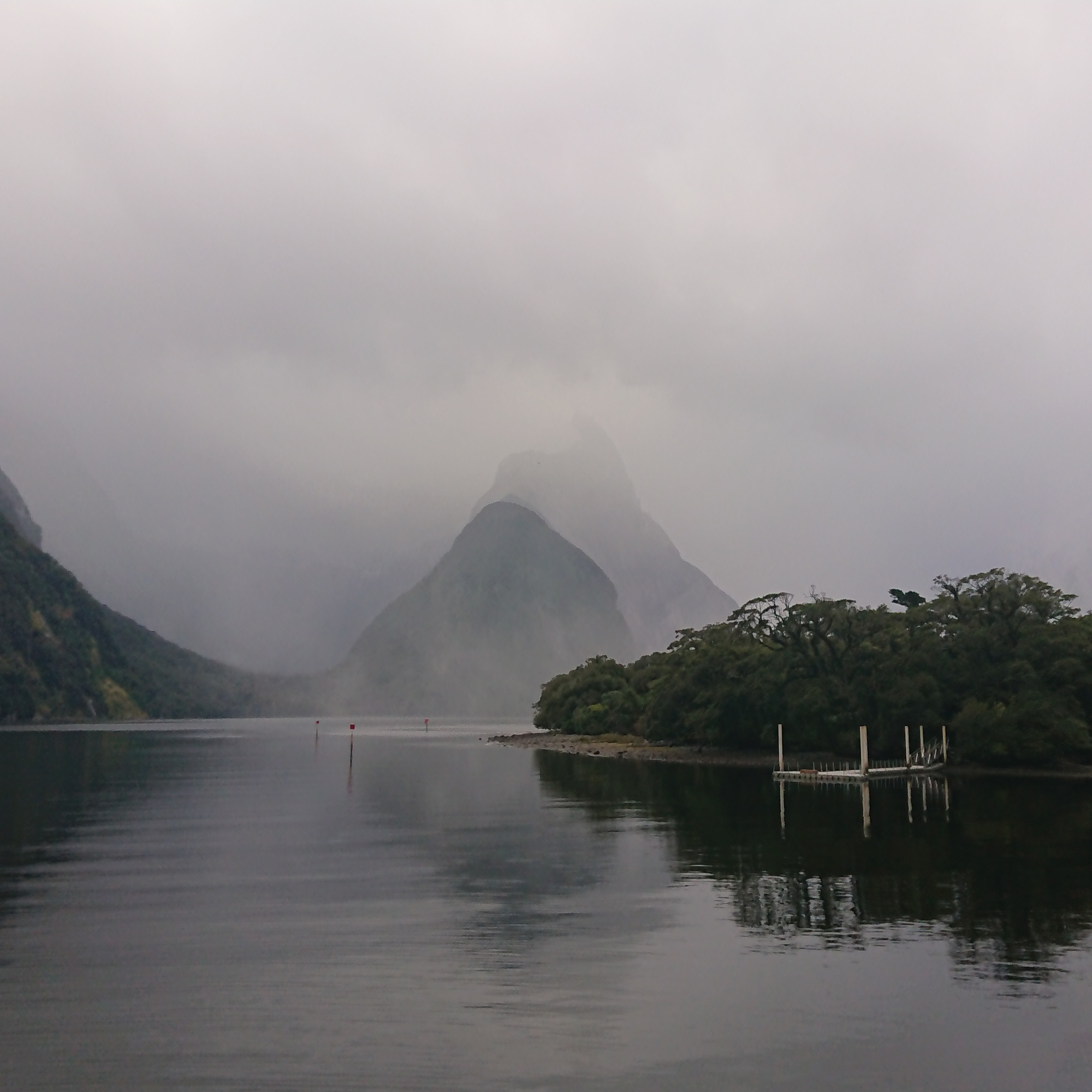 Starting the Milford Sound Cruise in the mist