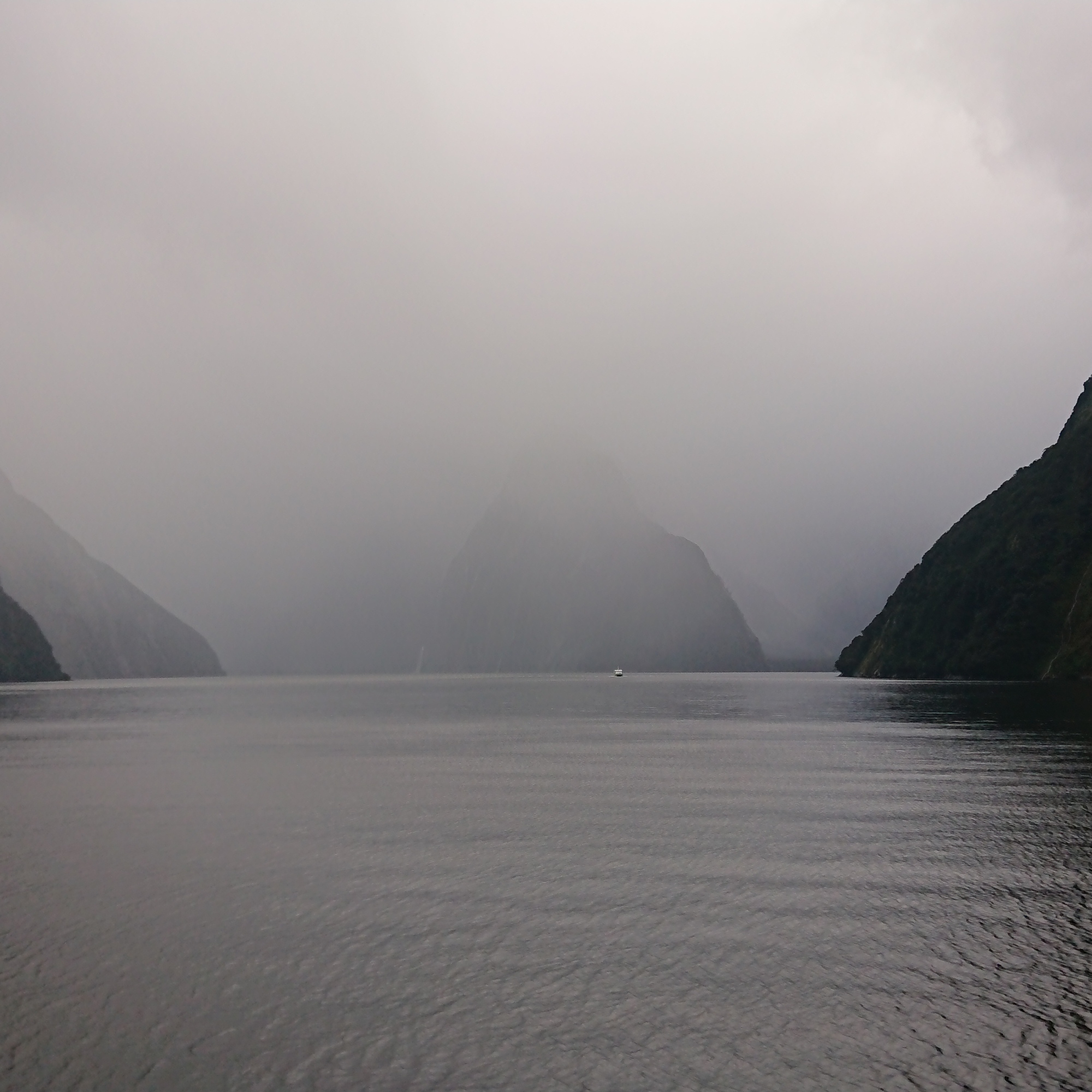 Shapes emerging from the mist in Milford Sound