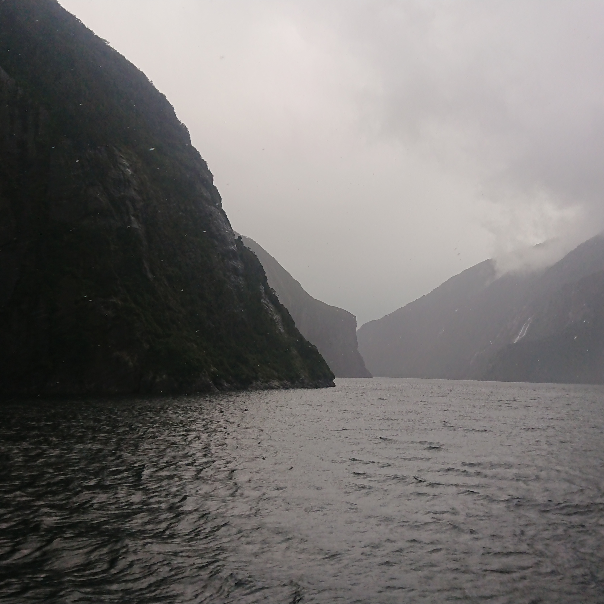 Moody views from the clouds and mist in Milford Sound