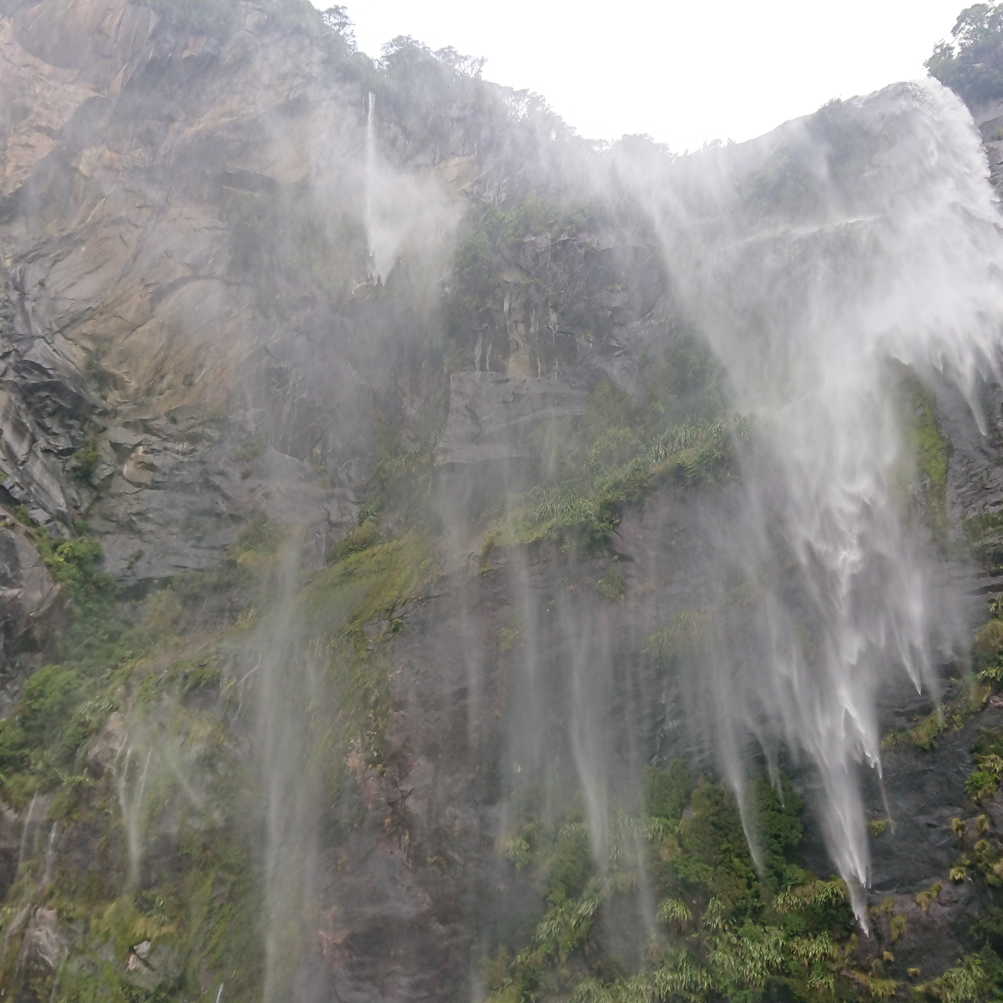My favourite waterfall in Milford Sound, with the water turning to spray mid-air