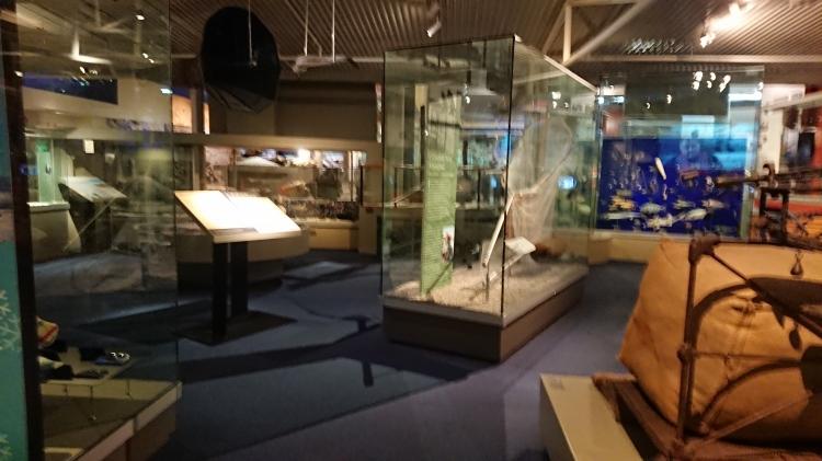 Displays at Otago Museum