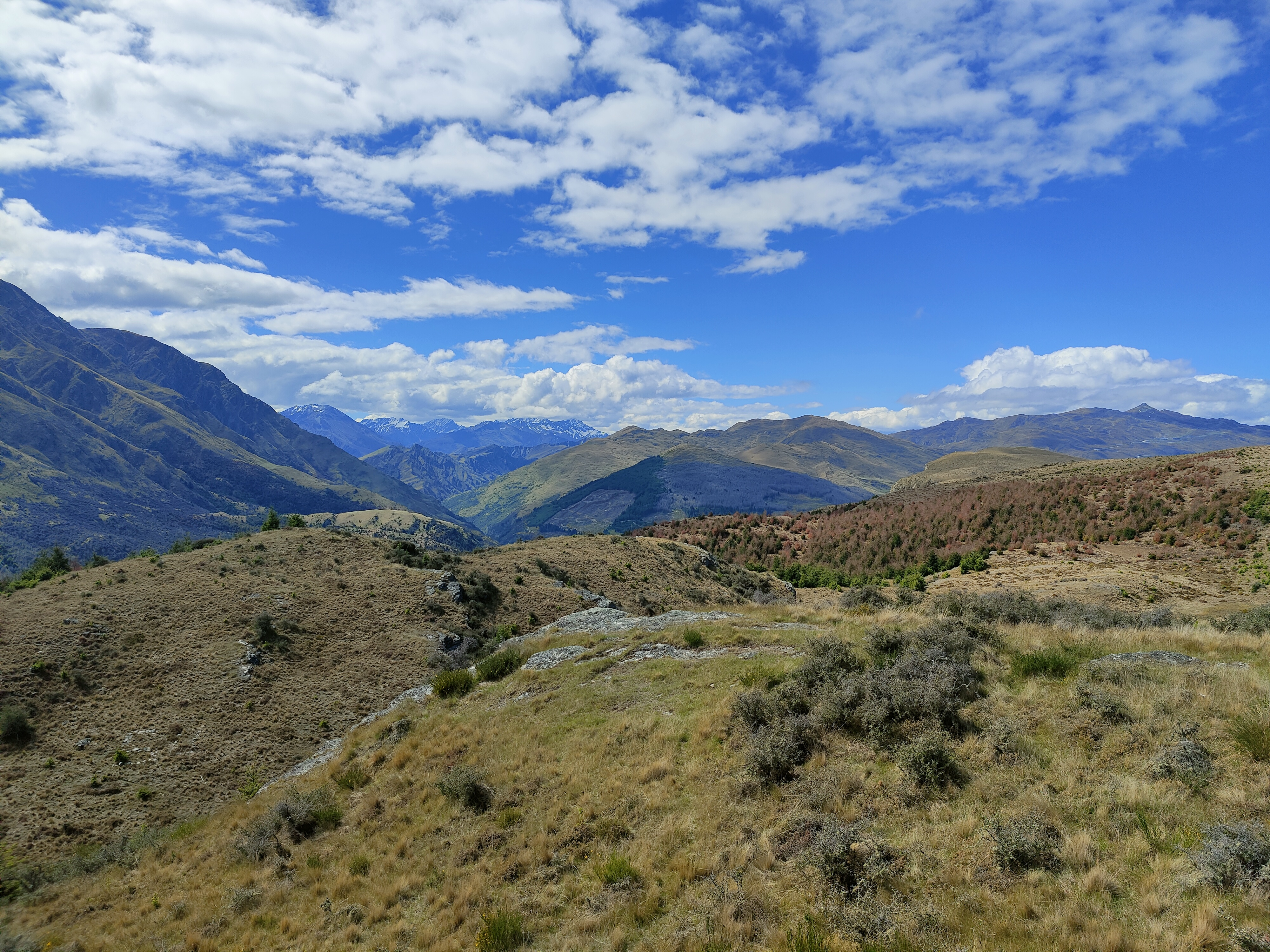 From the top of Queenstown Hill you can see in every direction, with beautiful countryside stretching into the distance