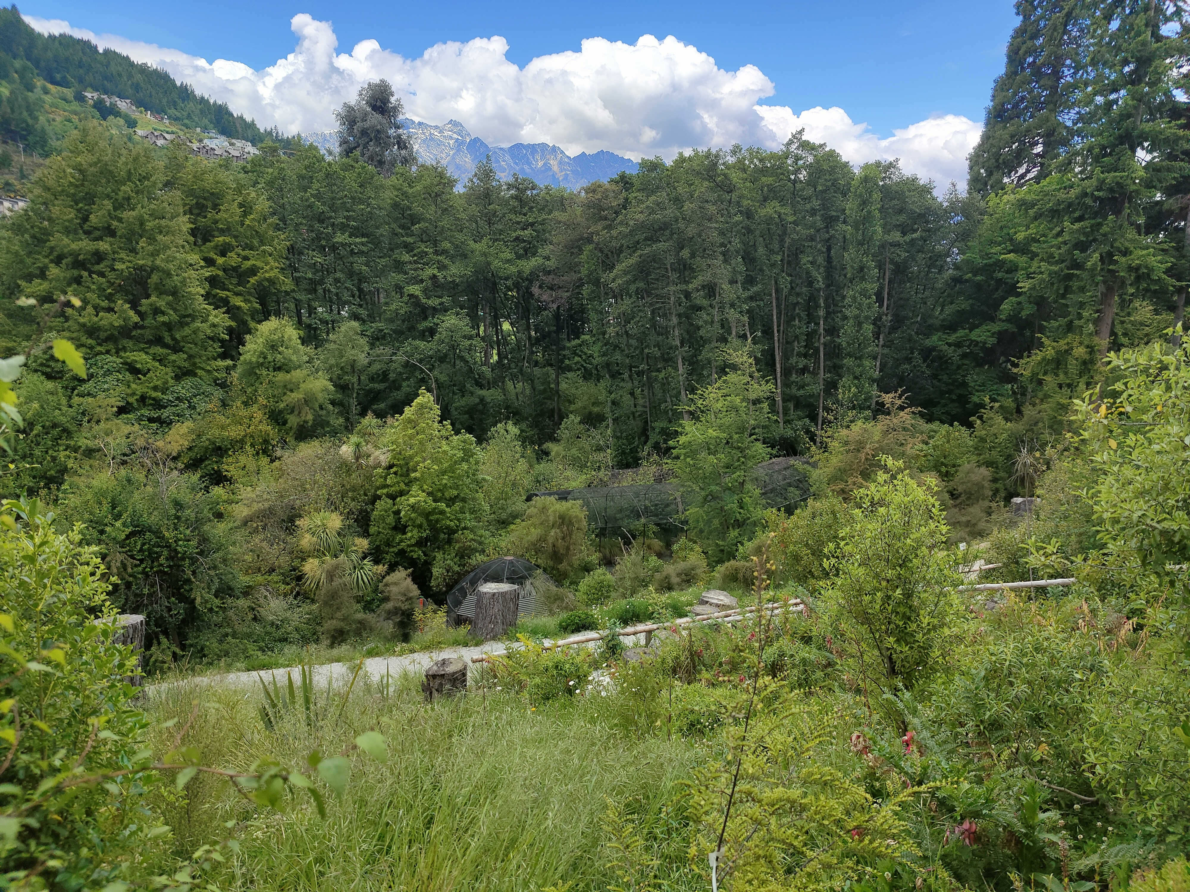 The Kiwi Bird Park is perfectly hidden away from the rest of Queenstown