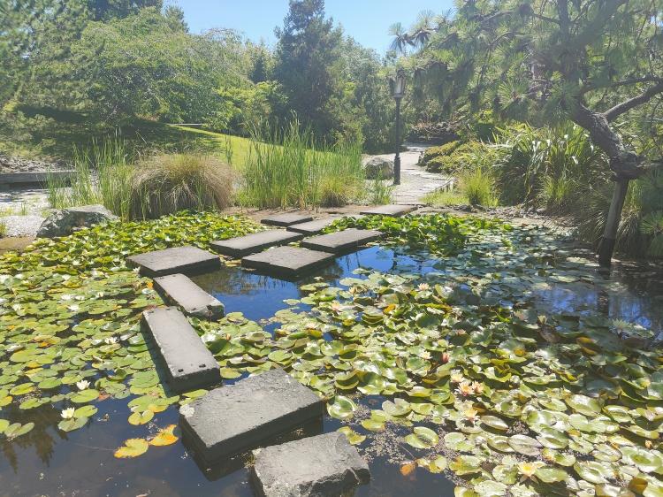 Stone steps at the Miyazu Gardens in Nelson