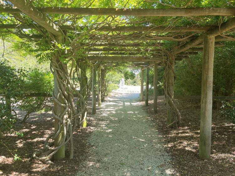 The Miyazu Gardens in Nelson