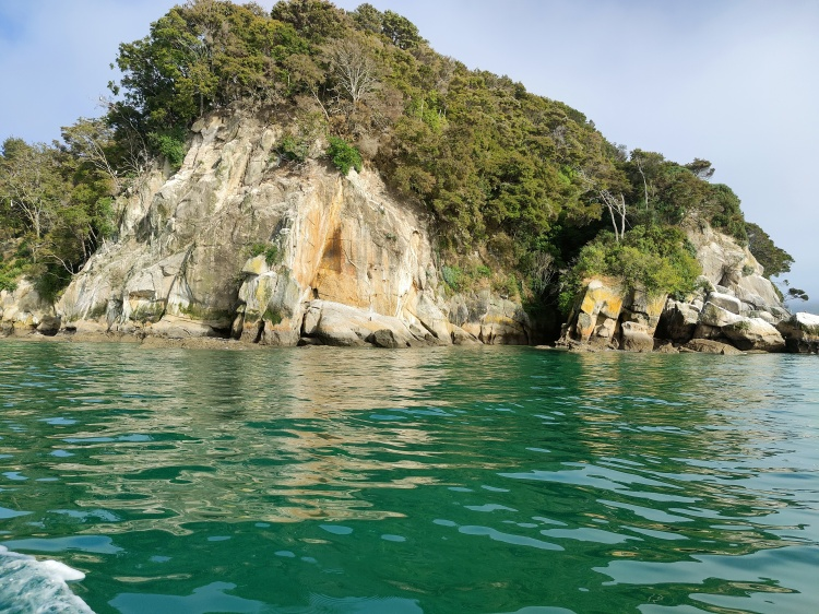 View from the water taxi as we bordered Abel Tasman National Park