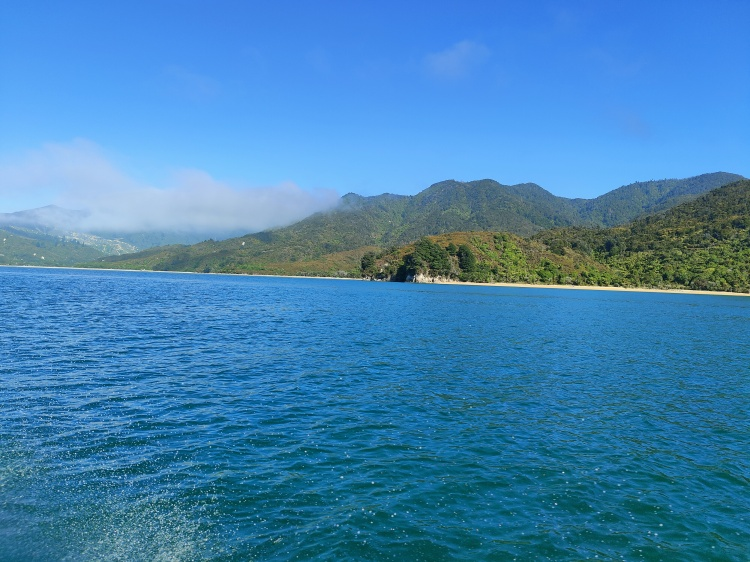 Abel Tasman National Park from the water taxi