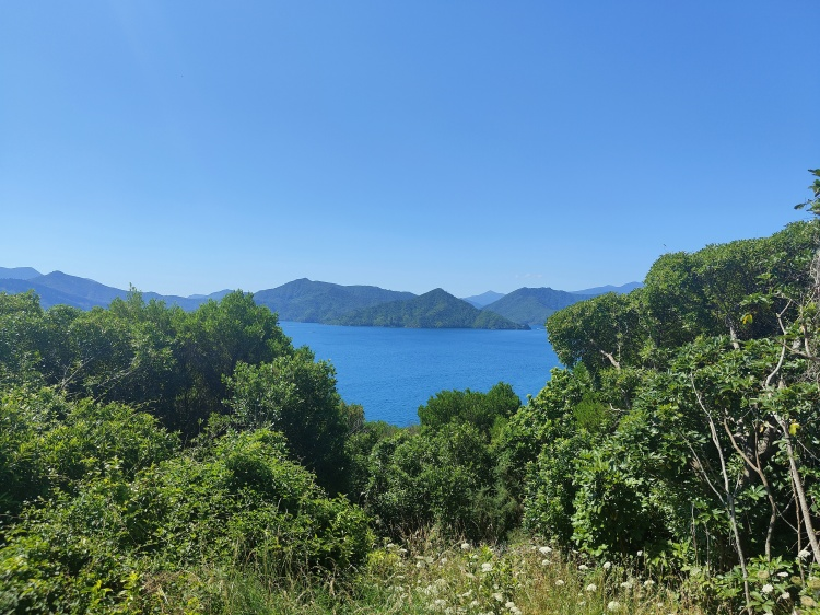 A look at a small section of the Marlborough Sounds on my way to the Snout