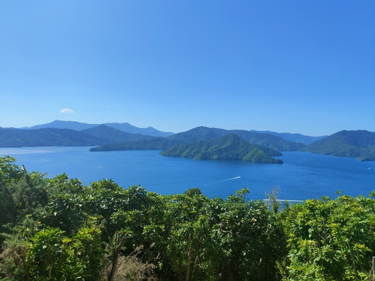 The Marlborough Sounds is a collection of islands and waterways that are picture perfect