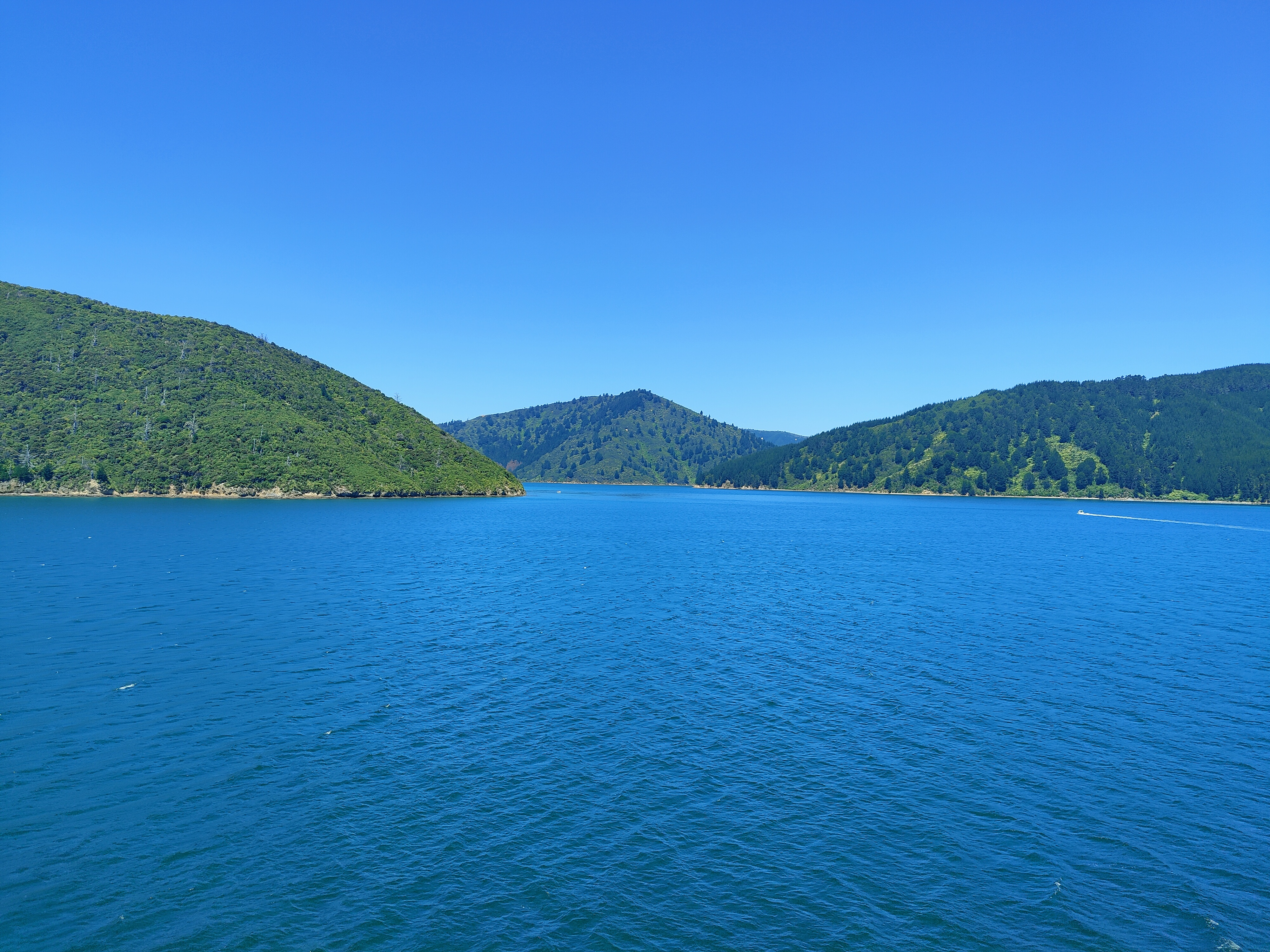 The Marlborough Sounds, as seen from the Interislander ferry from Picton to Wellington