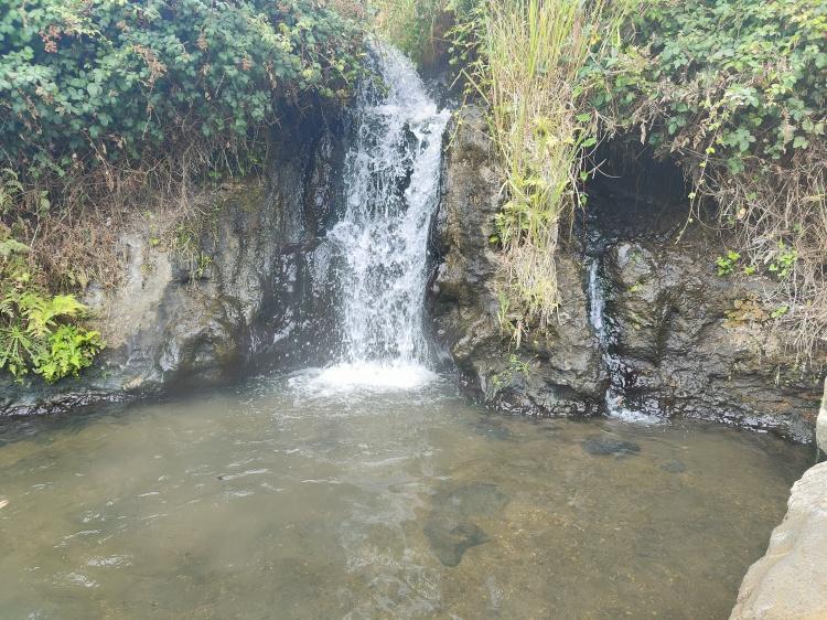 A geothermal hot spring at Otumuheke Spring
