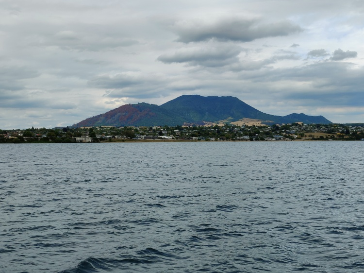 Heading back into Taupo from the lake