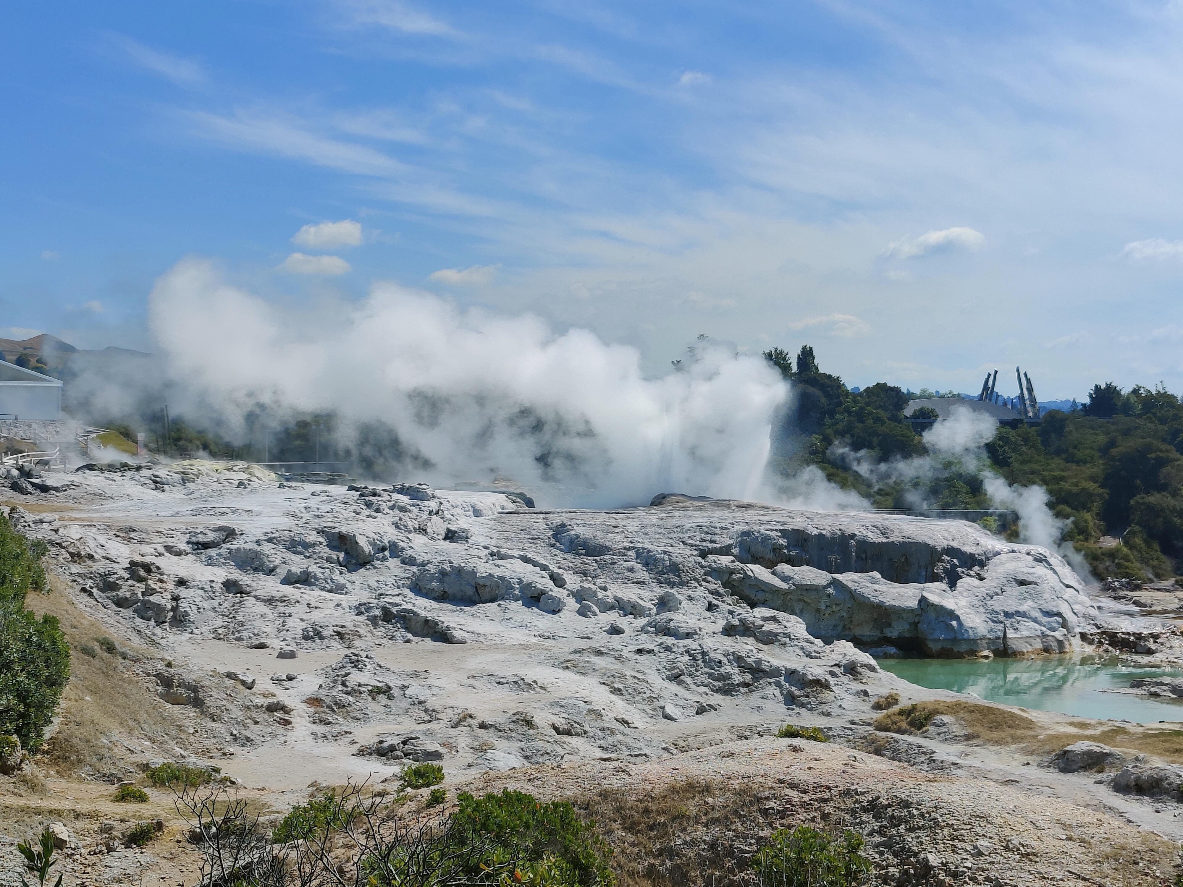The Pohutu geyser errupting at Whakarewarewa Village