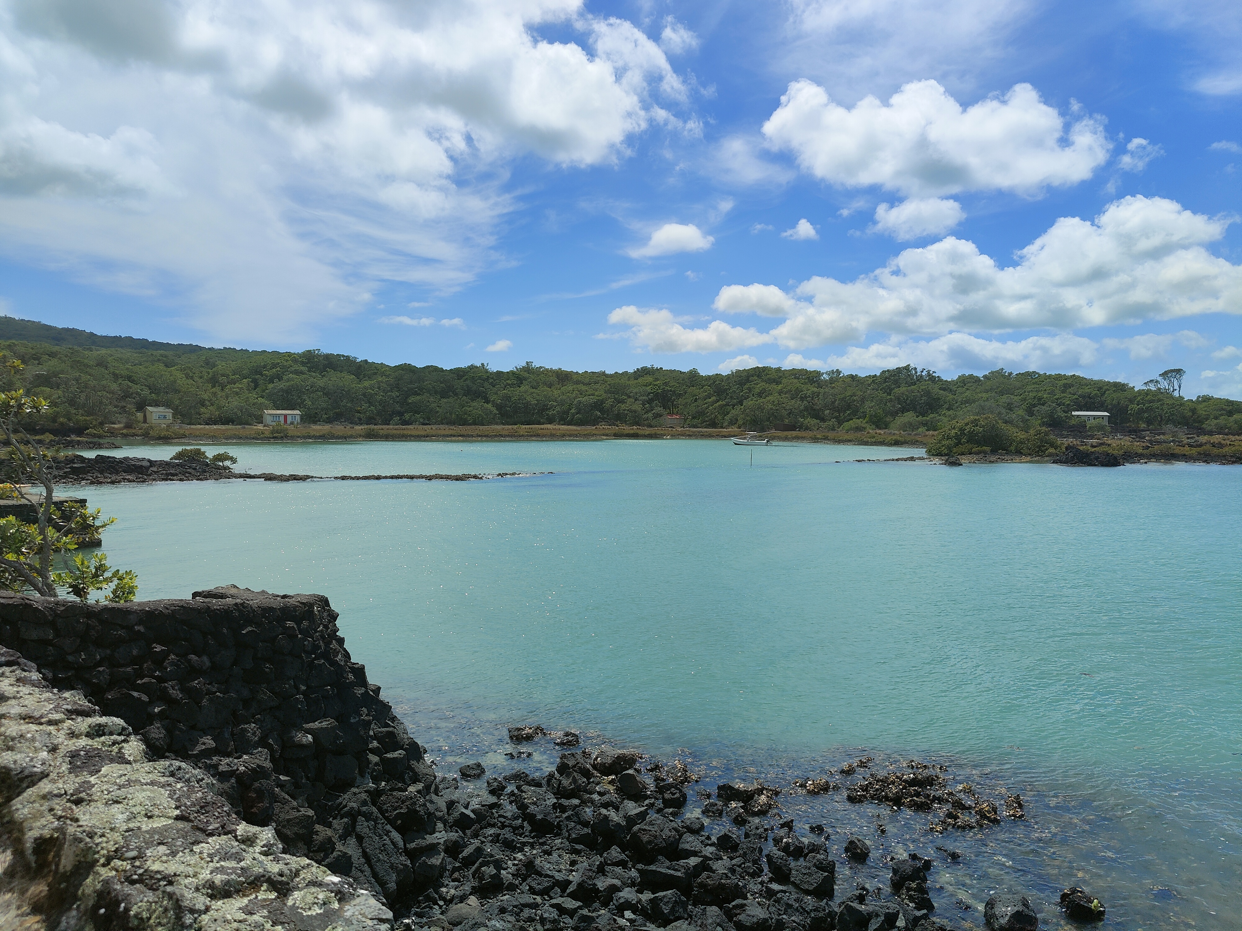 The first bay we come to on Rangitoto Island