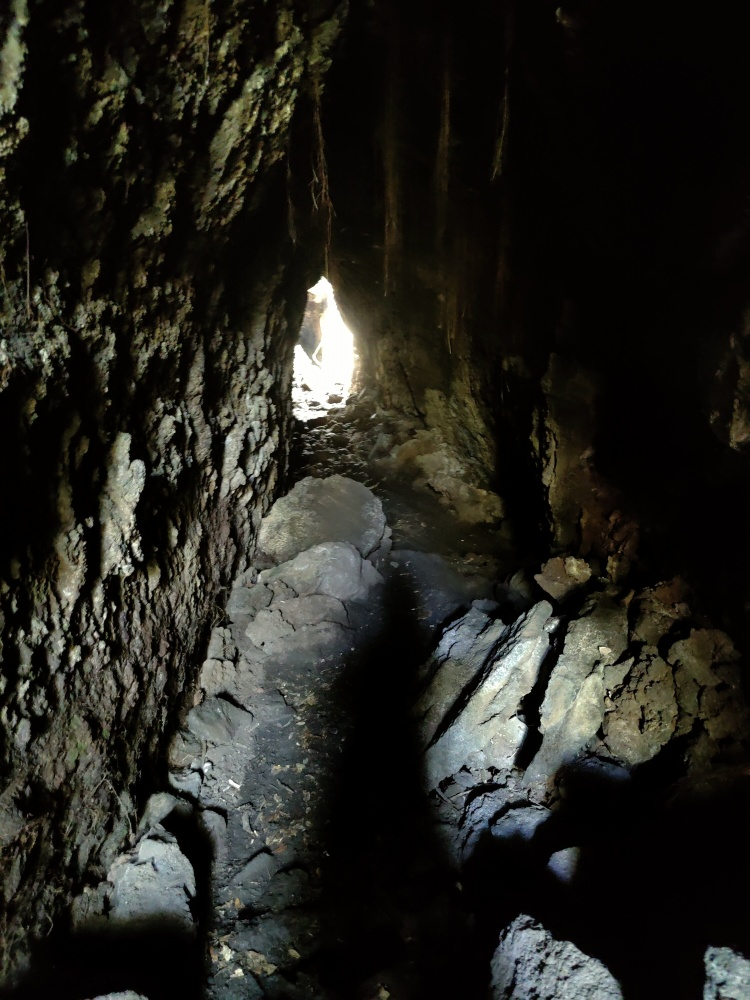 Inside the lava caves on Rangitoto Island