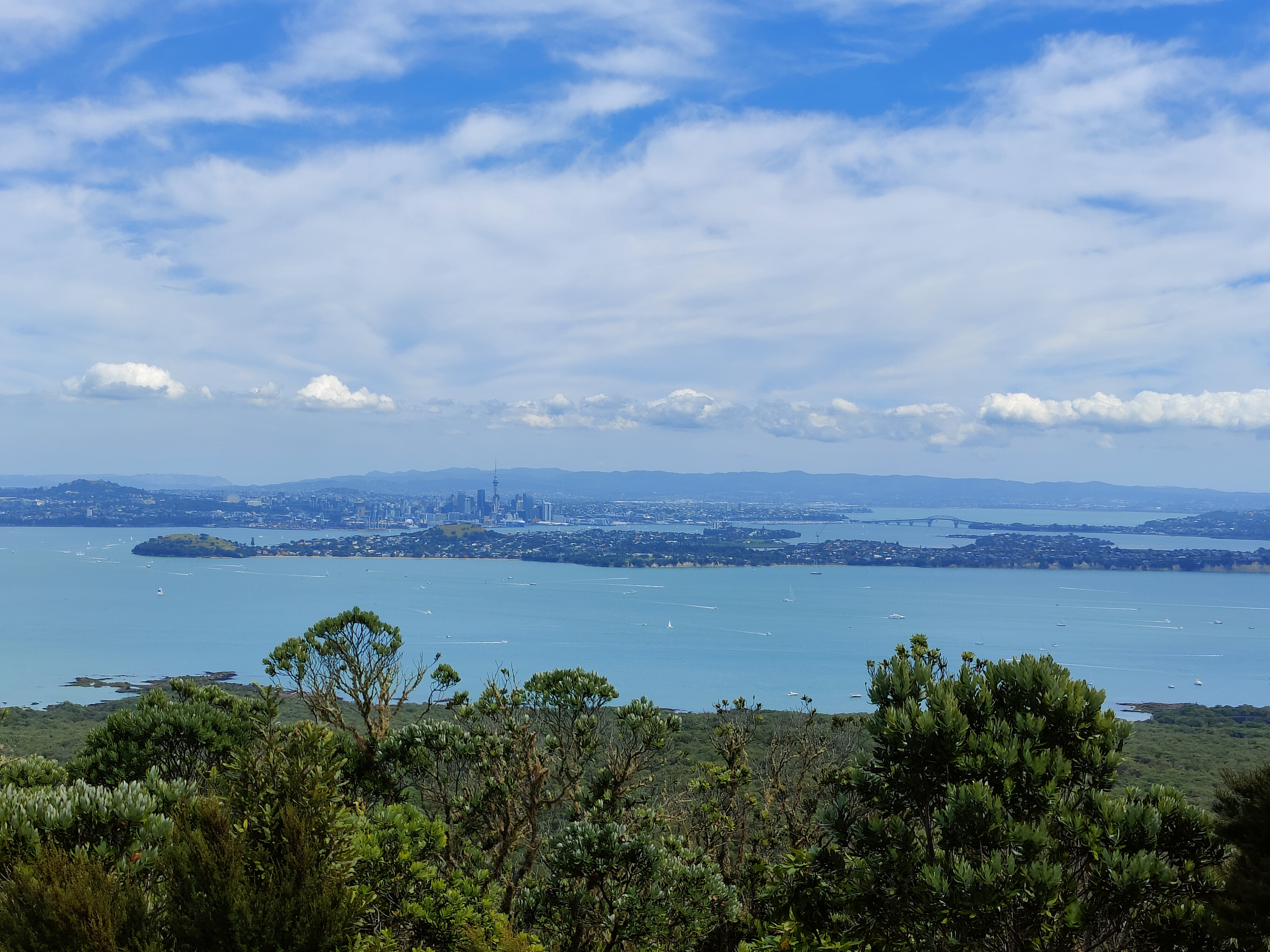 Looking to Auckland city from Rangitoto Island's summit