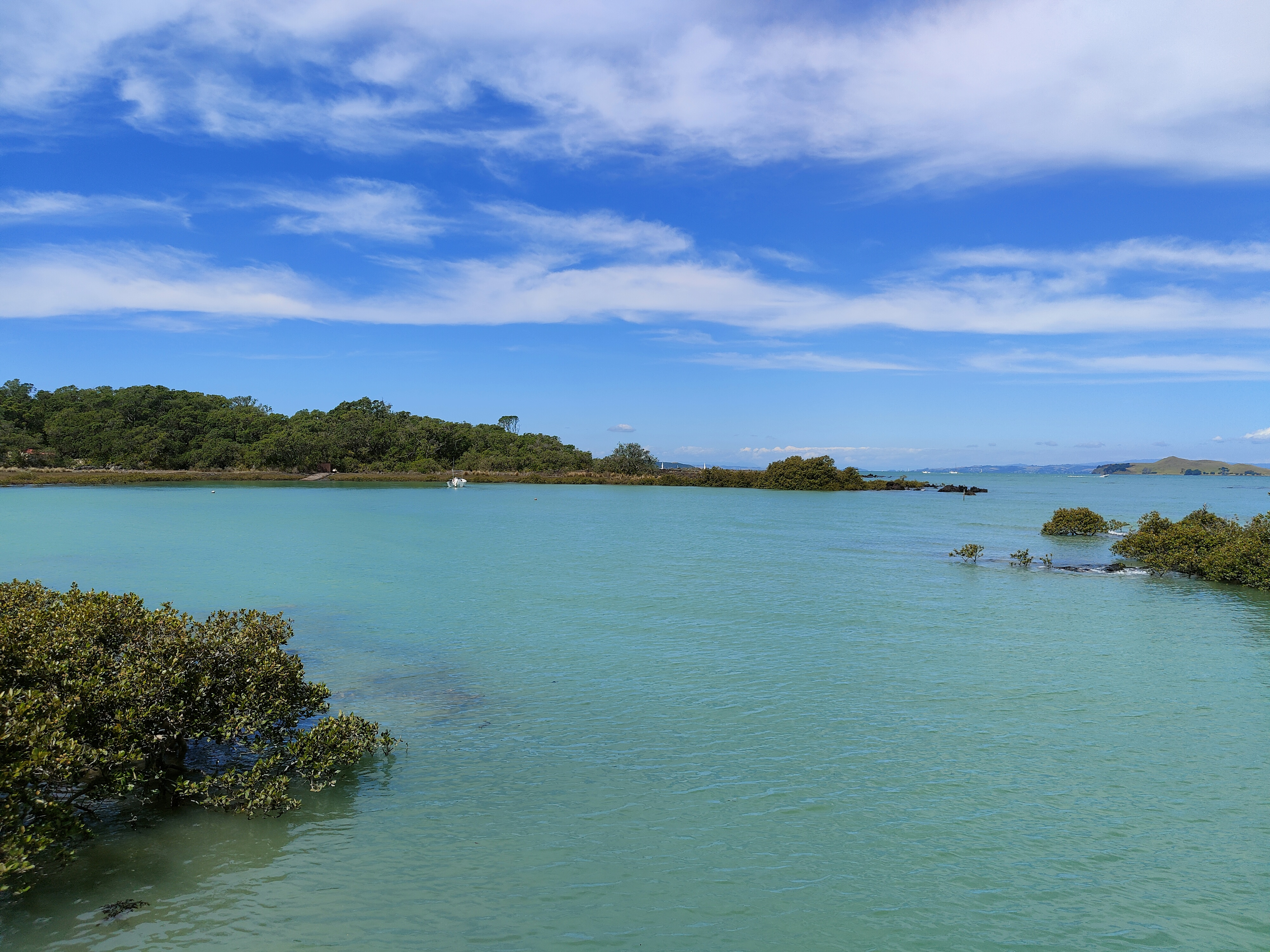 Gorgeous water inviting people to swim on Rangitoto Island