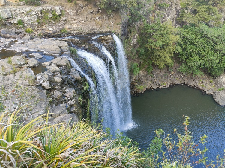 Looking at Whangarei Falls from the viewing platform