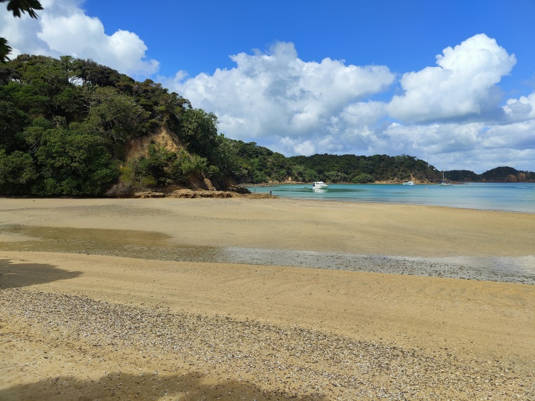 The beach we docked at on Urupukapuka Island