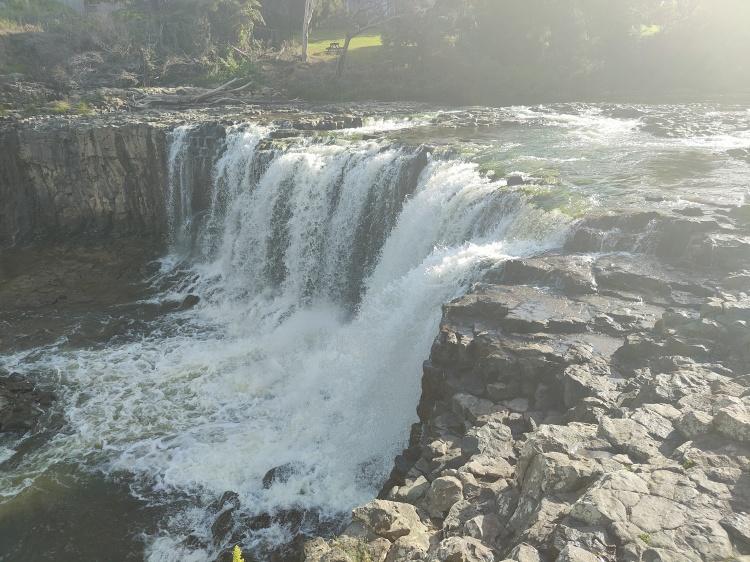 Haruru Falls after the storm