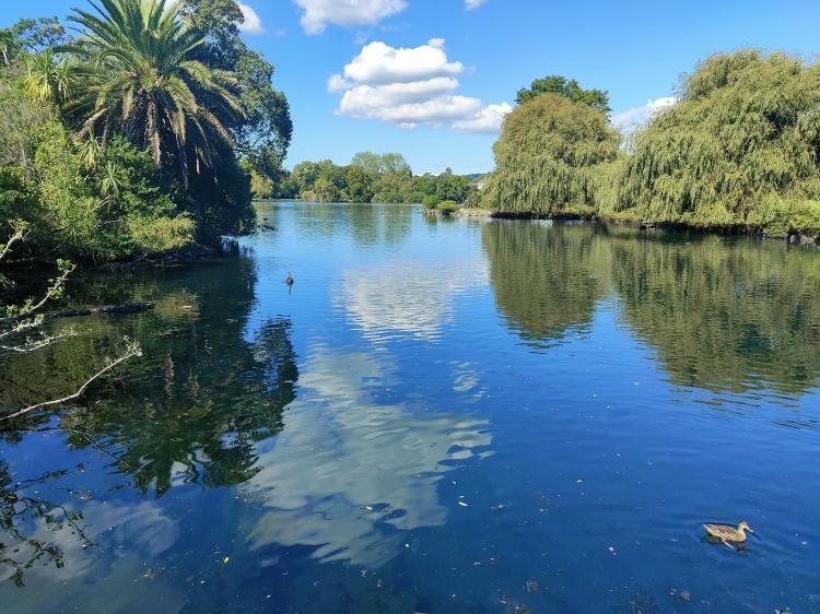 Walking around the lake in Western Springs Park
