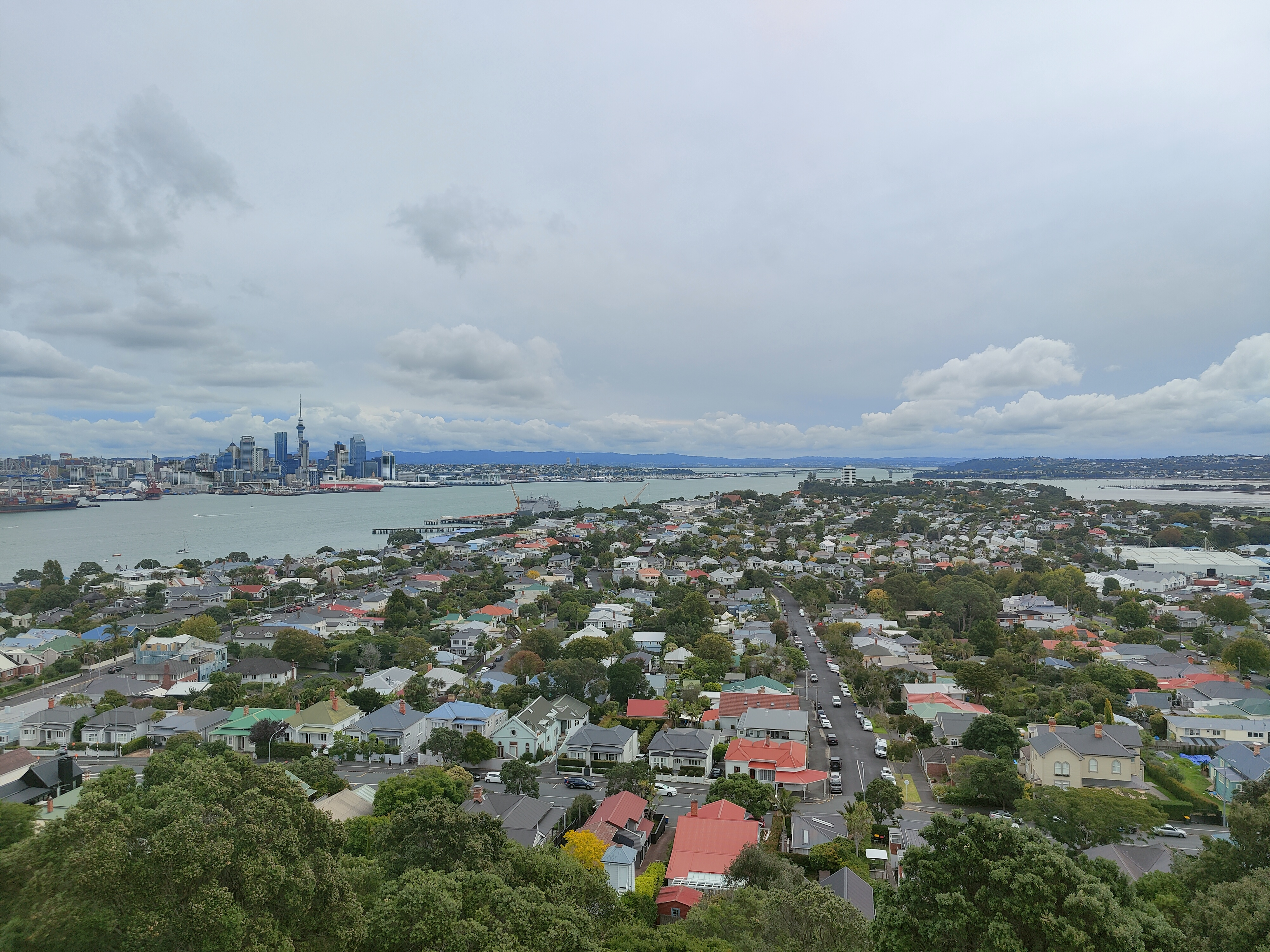 Looking to Auckland CBD from Mt Victoria